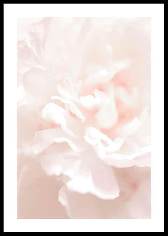 Tender Flowers No1-0