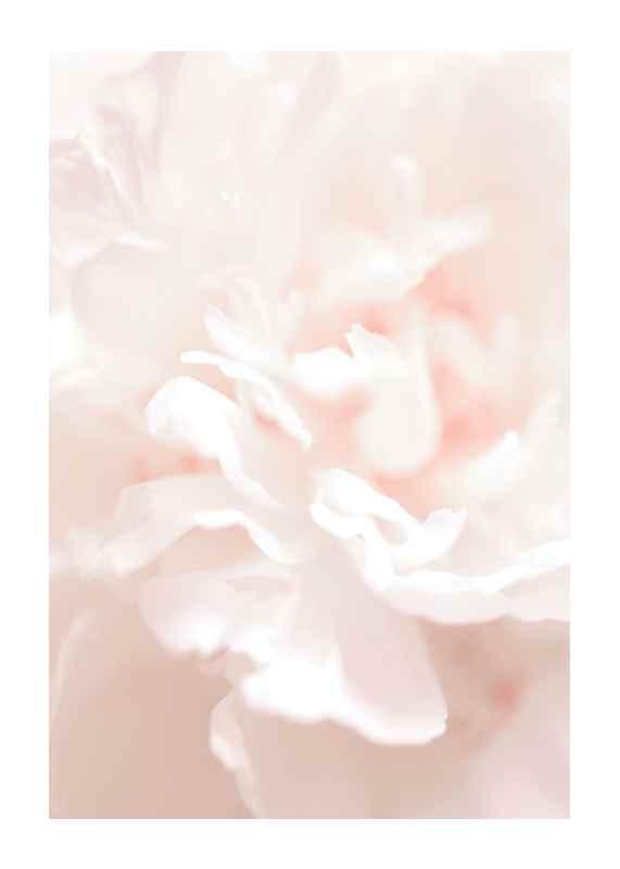 Tender Flowers No1-1