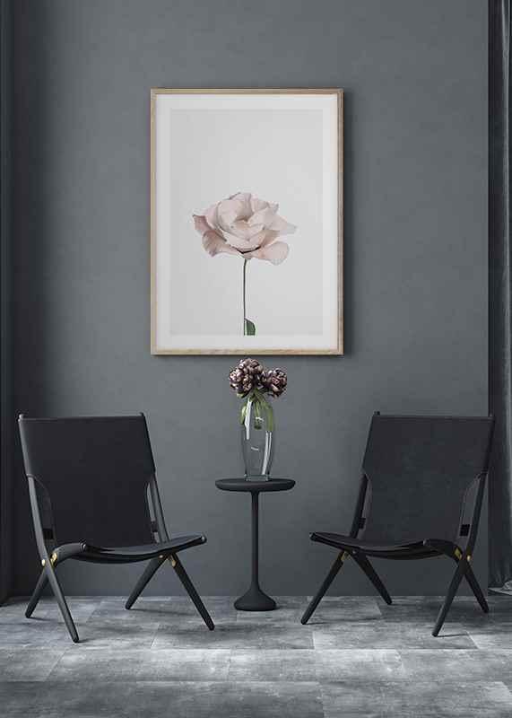 Pink Rose No2-4