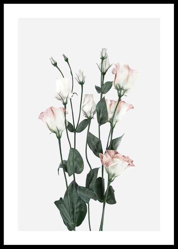Rose Bouquet No2-0