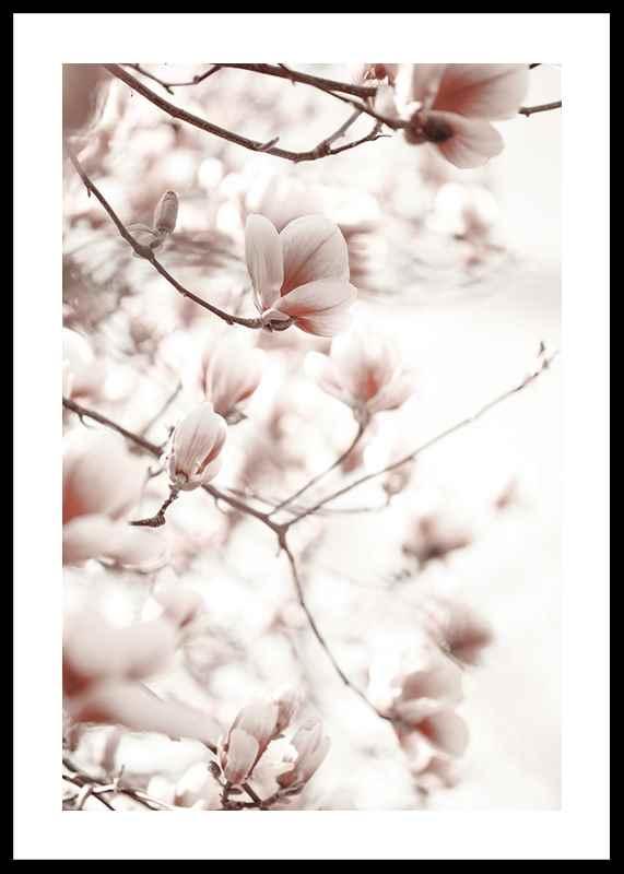 Pink Botanical Shades
