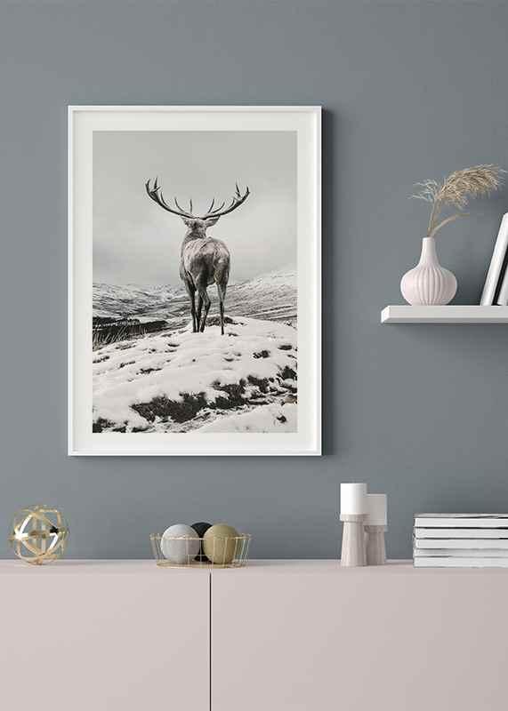 Winter Roe Deer-4