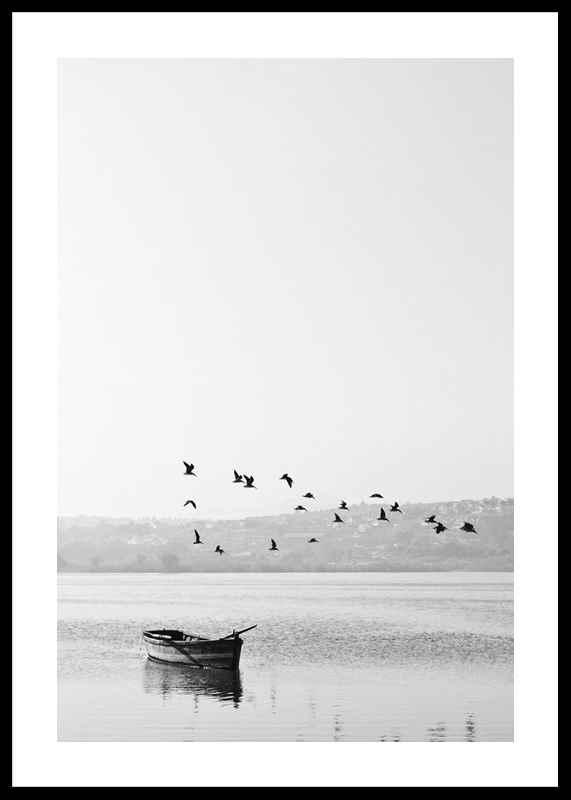 Birds over lake-0
