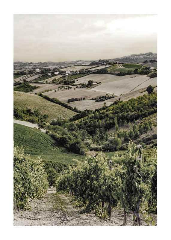 Gironde-1