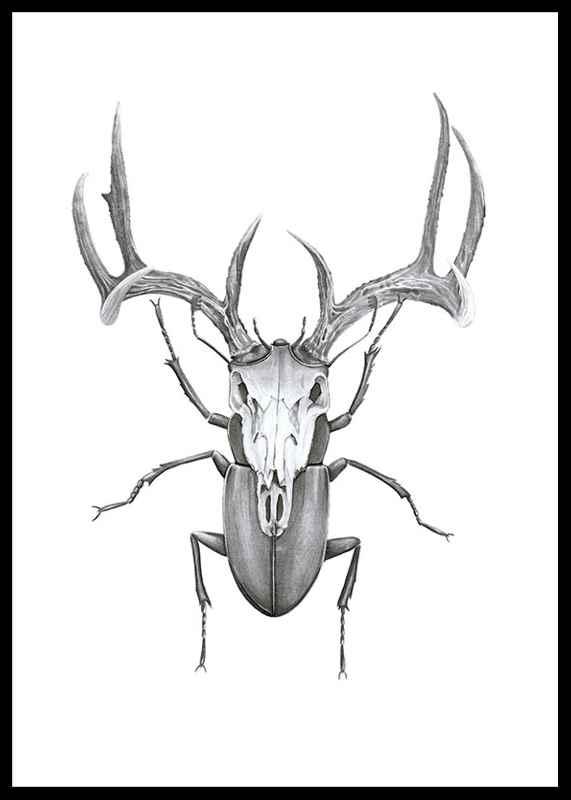 Mr stag beetle