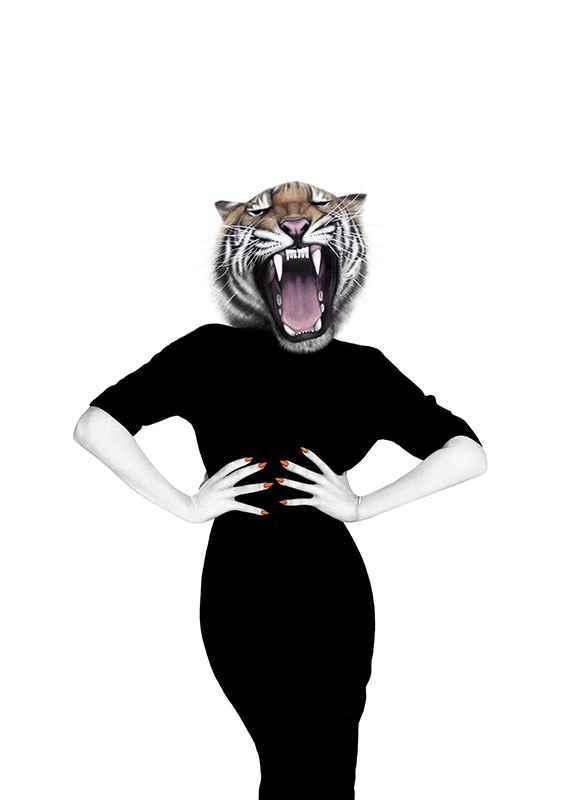 Wilma wildcat-1