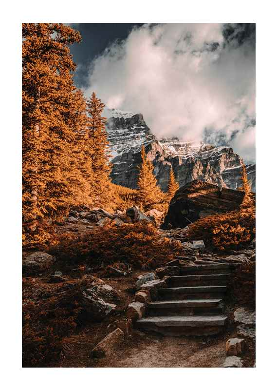 Autumn Wilderness-1