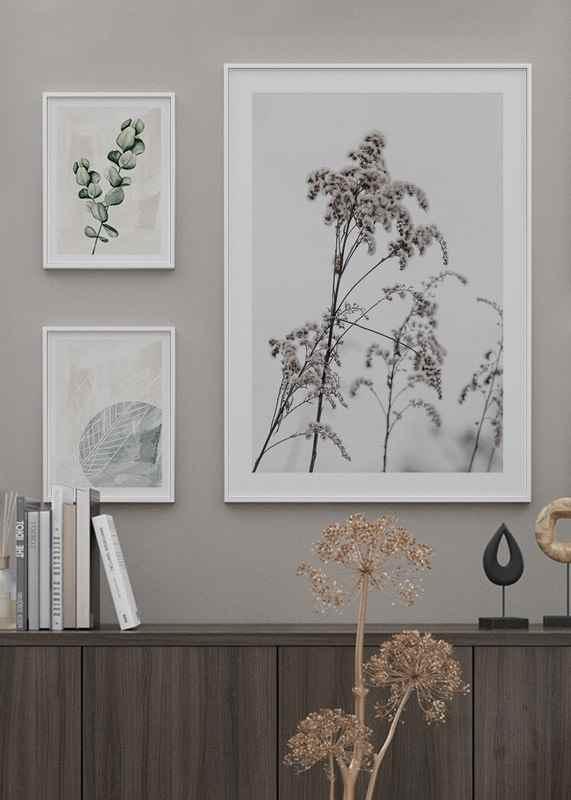 Dry Flowers-4