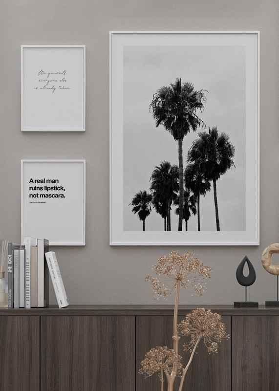 L.A Palm Trees-4