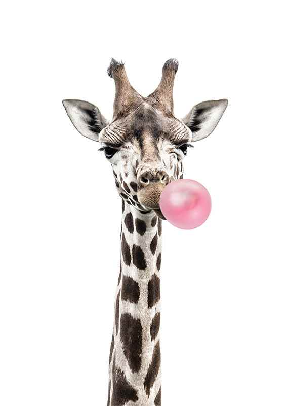 Bubblegum Giraffe-1