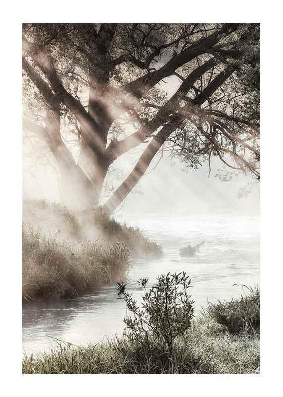 Foggy Dawn-1