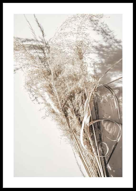 Dry Reeds No2-0