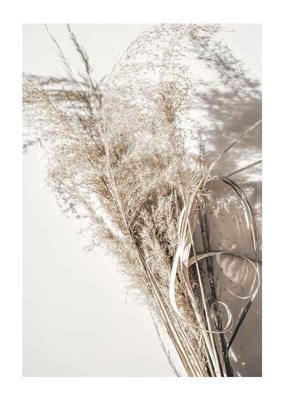 Dry Reeds No2-1