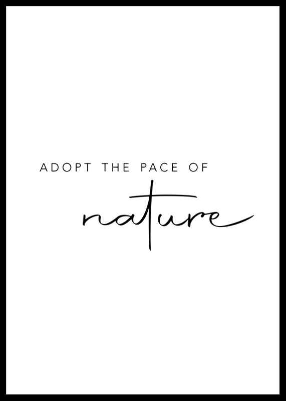 Pace Of Nature-0