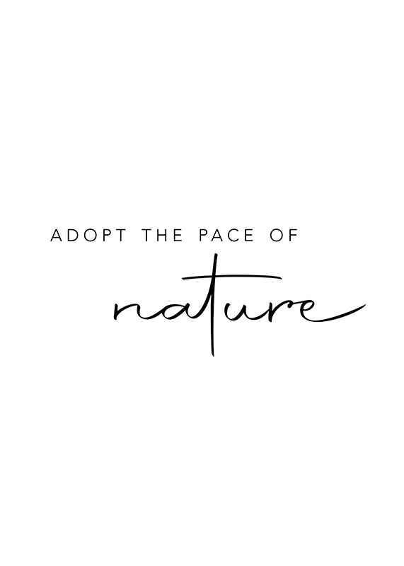 Pace Of Nature-1