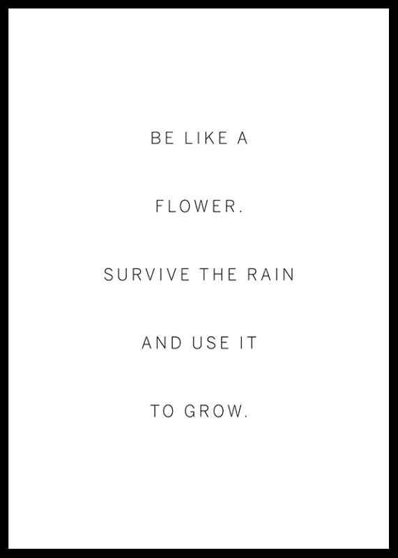 Like A Flower-0
