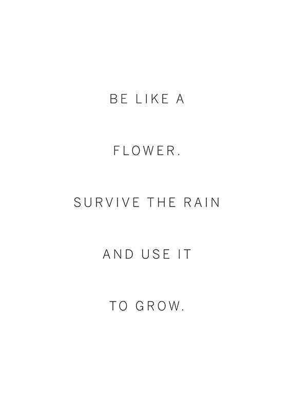 Like A Flower-1