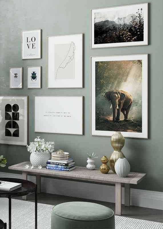 Forest Elephant-4