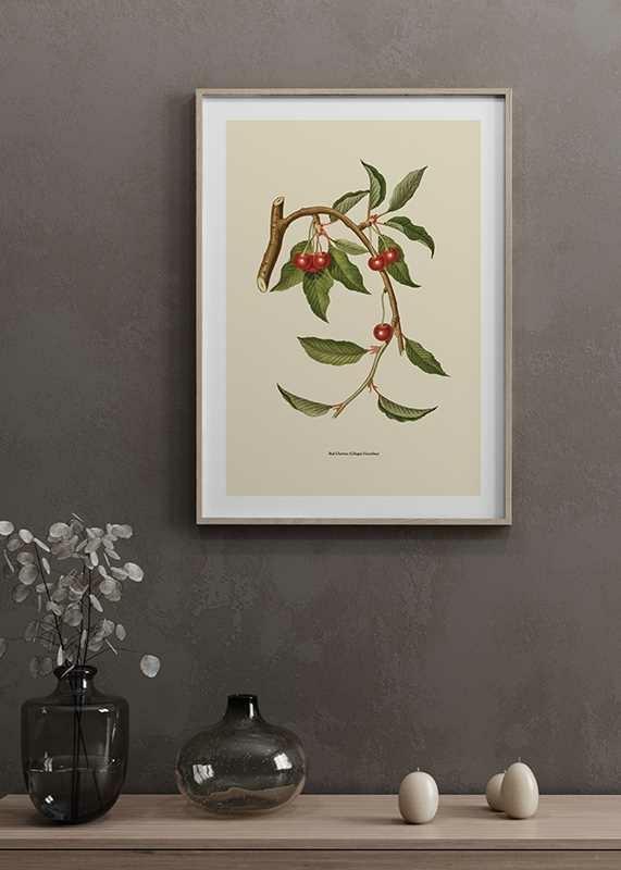 Red Cherries-4