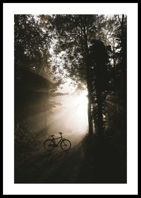 Bike In Forest-0