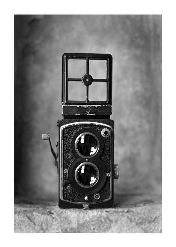 Twin Lens Camera-1