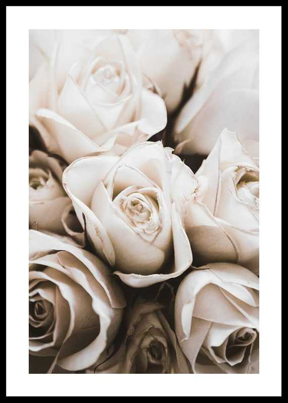 Bouquet Of Roses-0