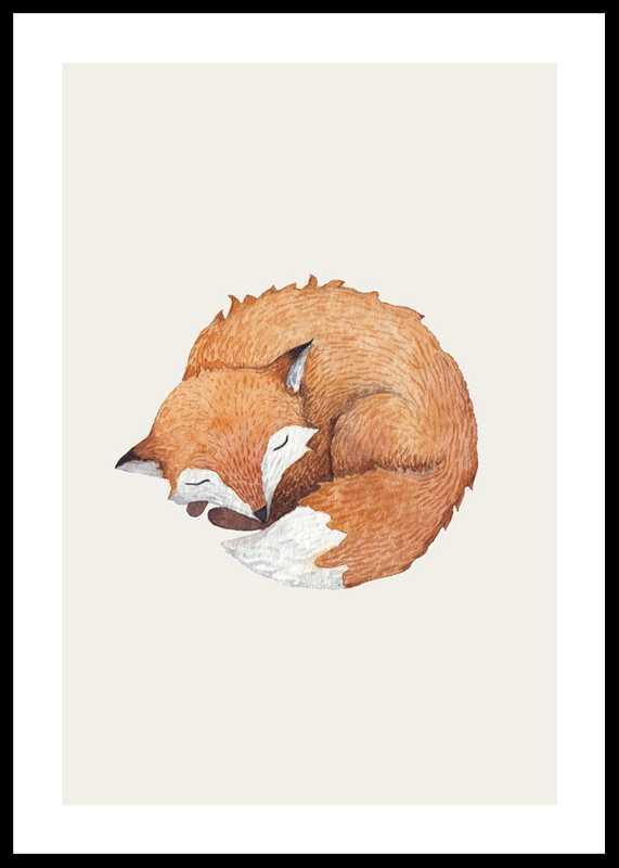 Sleeping Fox-0
