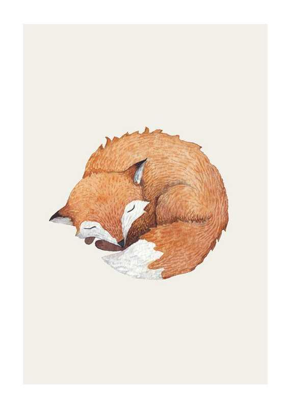 Sleeping Fox-1