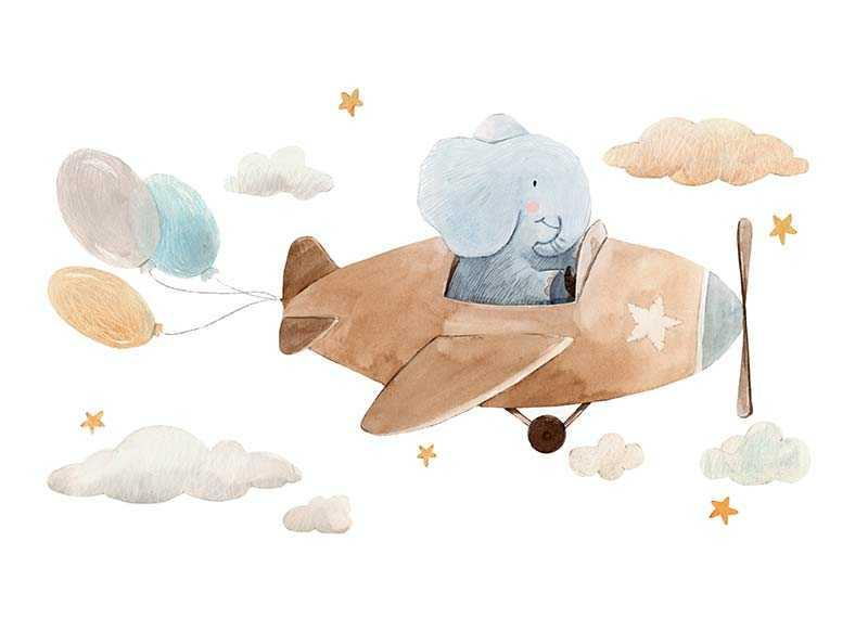 Elephant Pilot-1
