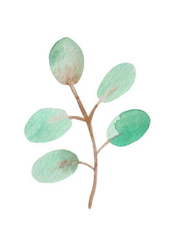 Watercolor Branch-1