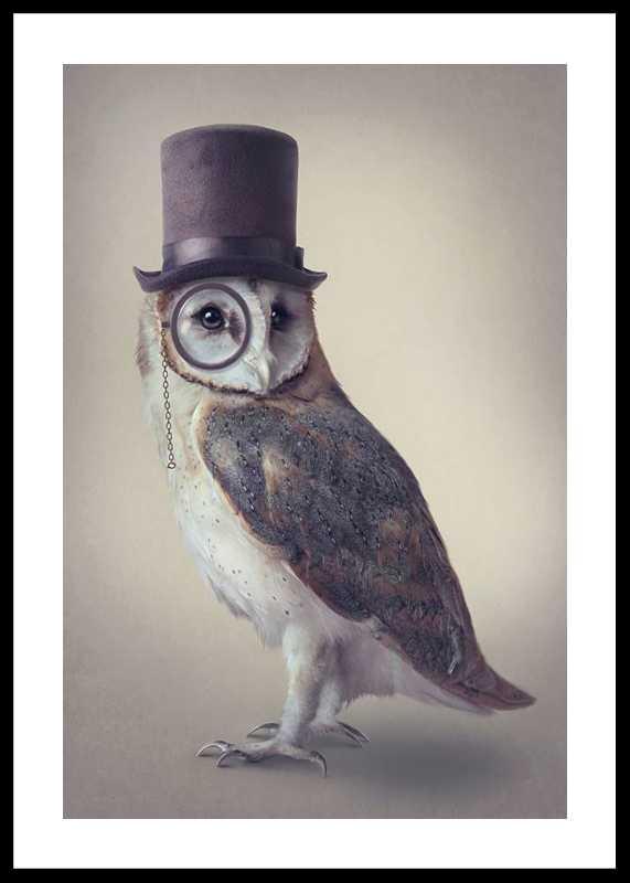 Potter Owl-0